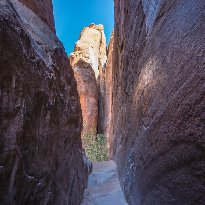 Inside the Fins of Arches National Park