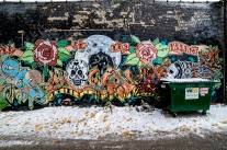 along the border of West Rogers Park and Rogers Park, Chicago, street art crams it's way into alleys.